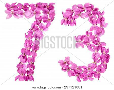Arabic Numeral 73, Seventy Three, From Flowers Of Viola, Isolated On White Background