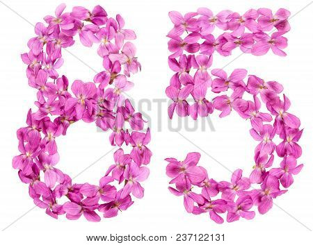 Arabic Numeral 85, Eighty Five, From Flowers Of Viola, Isolated On White Background