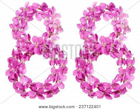 Arabic Numeral 88, Eighty Eight, From Flowers Of Viola, Isolated On White Background
