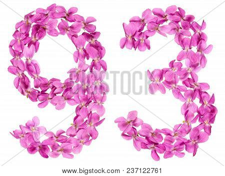 Arabic Numeral 93, Ninety Three, From Flowers Of Viola, Isolated On White Background