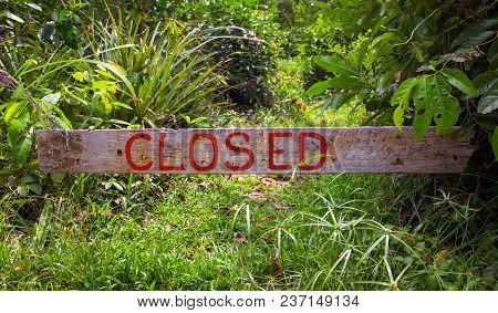 Closed Sign On Wooden Board In Sunny Summer Garden. Wooden Board With The Inscription Closed. Rustic