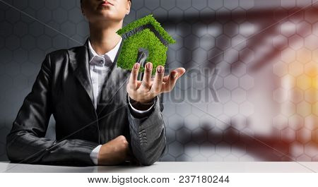 Businessman In Suit Presenting Green Plant In Form Of House Symbol With Office View And Sunlight On