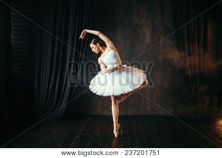 Graceful ballerina dancing on theatrical stage