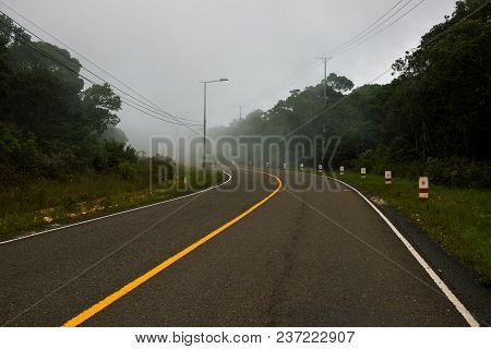 Curved Road Landscape With Green Forest And Fog. Empty Highway In Green Summer Landscape. Straight R