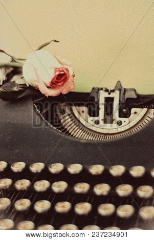 Fresh Pink Rose On Vintage Typewriter With Blank Page, Retro Toned