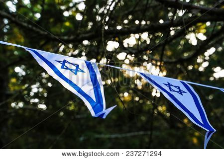 Israeli Flags On The Background Of The Trees