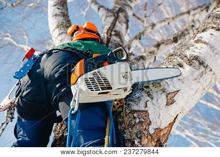 Man Sawmill Saws Tree With Chainsaw At Height