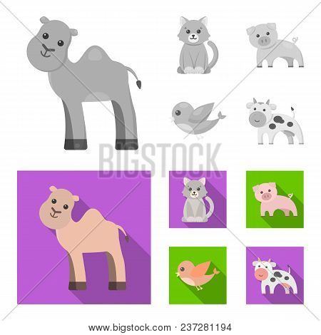 An Unrealistic Monochrome, Flat Animal Icons In Set Collection For Design. Toy Animals Vector Symbol