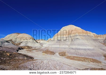Badlands Landscape With Tree Trunks In Petrified Forest National Park, Arizona, Usa