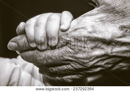 Childs Hand And Old Wrinkled Skin Palm Finger Concept Idea Of Love Family Protecting Children And El