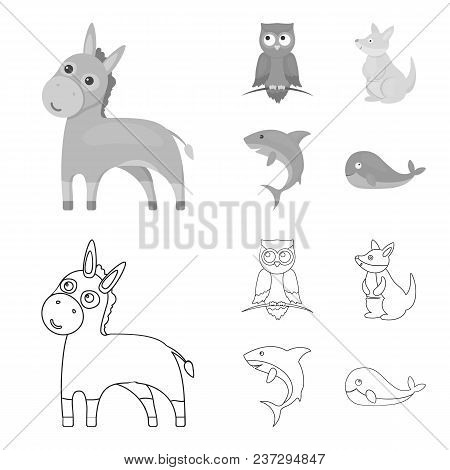 Donkey, Owl, Kangaroo, Shark.animal Set Collection Icons In Outline, Monochrome Style Vector Symbol