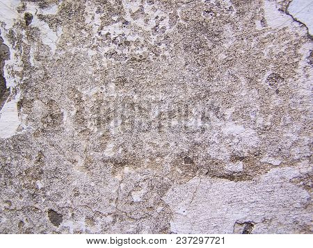 Old Gray Concrete Background, Light Background Close-up