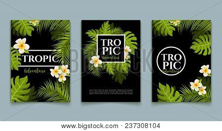 Tropical Palm Flyer Leaves Background Set. Trendy Tropical Design Summer Card. Exotic Jungle Banner.