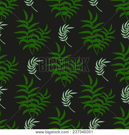 Tropical Pattern Palm Summer Green Palm Leaves Black Background. Vector Exotic Seamless Pattern Desi