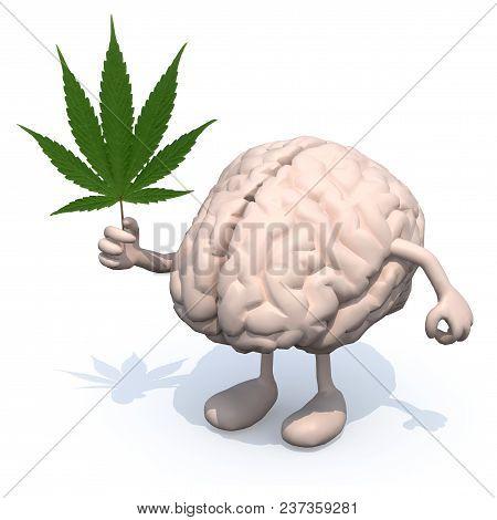 Human Brain With Arms, Legs And Marijuana Leaf On Hand, 3d Illustration
