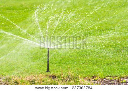 Lawn Sprinkler Spaying Water Over Green Grass, Irrigation System