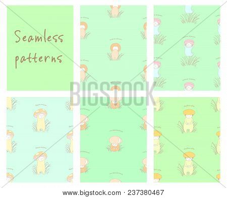 Set Of Hand Drawn Cute Seamless Vector Patterns With Mushrooms With Latin Names: Fly Amanita, Red Ca