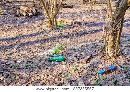 Garbage And Empty Bottles In The Wood. Environmental Pollution