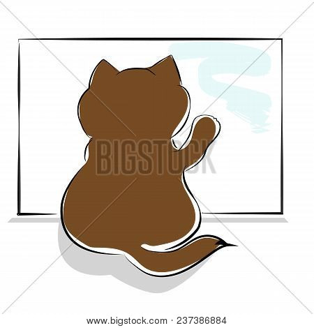 Vector Brown Drawing Cute Fat Cat Sitting Near The Window. Kitten In Anticipation Of The Owner, Rear