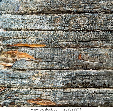 Charred Siding Black Wood Texture Square Pattern
