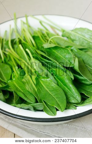 Bright Fresh Leaves Of Sorrel In A Bowl Of Water. Rustic Style, Selective Focus.