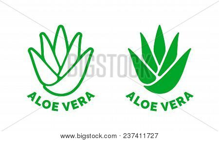 Aloe Vera Green Leaf Label For Natural Organic Moisturizing Gel And Lotion Package. Isolated Aloe Ve