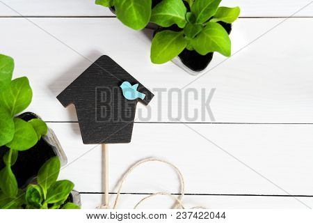 Topper in the form of house with young sprouts, shoot, seedling, sapling in a wooden box. Flat lay with copy space poster