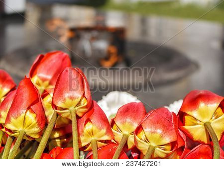 Flowers Lying Near The Monument With Eternal Fire On The Victory Day