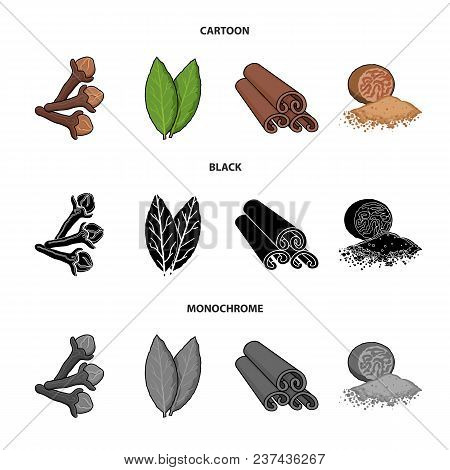 Clove, Bay Leaf, Nutmeg, Cinnamon.herbs And Spices Set Collection Icons In Cartoon, Black, Monochrom