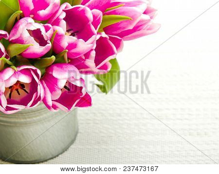 Pink Tulip Bouquet On Light Background, Copy Space