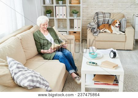 Smiling Enjoyable Attractive Senior Woman Relaxing With Interesting Book And Sitting On Comfortable
