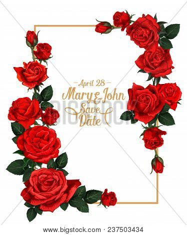 Wedding Save The Date Picture Frame Or Marriage Invitation Card Of Red Rose Flowers. Vector Design T