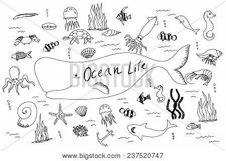 Hand Drawn Vector Set With Ocean Life. Cartoon Cute Marine Inhabitants In Doodle Style, Sea Food.