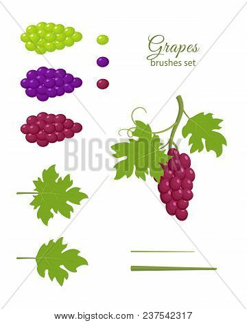 Bunches Of Grapes, Dark Red, Dark Purple And Green Grapes, Green Leaves, Grapes Brushes Set, Design