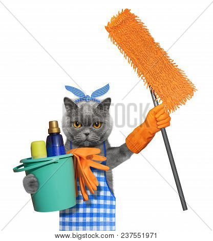 Cat In Apron With Mop Doing Household Chores. Isolated On White Background