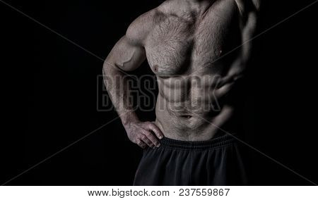 Arm With Strong Biceps And Triceps. Torso With Six Pack And Ab Muscles. Athletic Belly And Muscular
