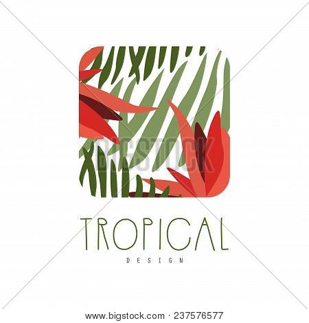 Tropical Logo Template Design, Square Badge With Palm Leaves And Red Flowers Vector Illustration Iso