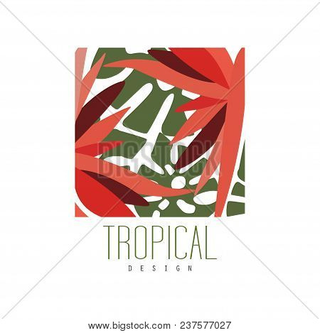 Tropical Logo Template Design, Square Badge With Palm Leaves And Red Exotic Flowers Vector Illustrat