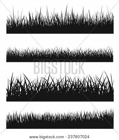 Vector Set Of Black Grass Silhouettes - Stock Vector.