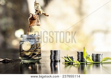 A Glass Jar Full Of Coins And A Dry Plant Dying Through It.  Concept Of Loan,  Mortgage,  Inflation,