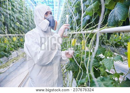 Waist Up Portrait Of Plantation Worker Wearing Protective Hazmat Suit And Mask While Taking Probes I