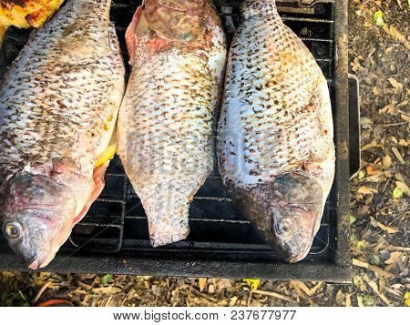 Fish Grill  There Are Fish On The Grill And Grilled. An Freshwater Fish On The Grill. Cooked In Trad