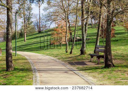 Garden or park bench near an empty dirt path, track, trail or pathway through the trees and green grass lawn in Parque da Devesa Urban Park. Vila Nova de Famalicao, Portugal