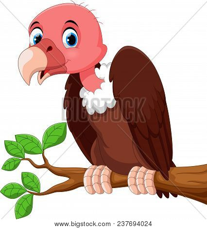 Vector Illustration Of Cute Vulture Bird Cartoon On The Tree Branch