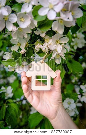 Symbol Of The House In The Hand Of The Girl Against The Background Of The Blossoming Apple-tree