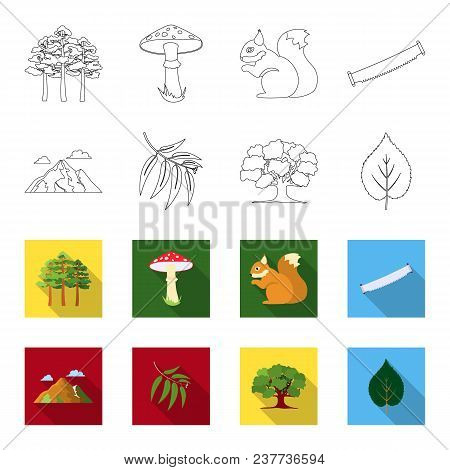 Mountain, Cloud, Tree, Branch, Leaf.forest Set Collection Icons In Outline, Flat Style Vector Symbol