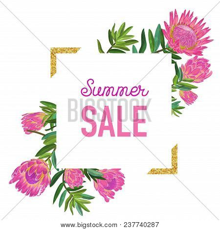 Summer Sale Floral Banner With Golden Frame. Seasonal Discount Advertising With Pink Protea Flowers.
