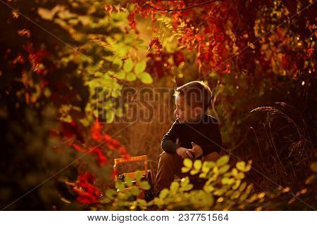 Little Boy Playing Outdoor With A Toy Car. Beautiful Child Photo With Golden Light.