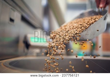 Picture of man's hand with scoop with spilling grains of coffee, industrial scales