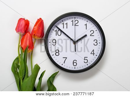 three natural tulips flowers and clock on white background - time, love and holiday concept